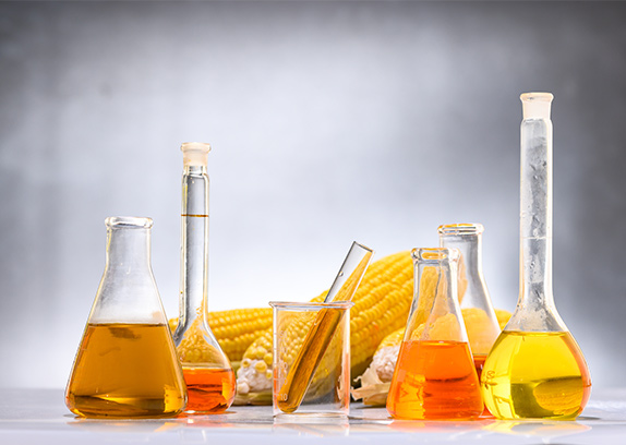 Biofuels and Energy
